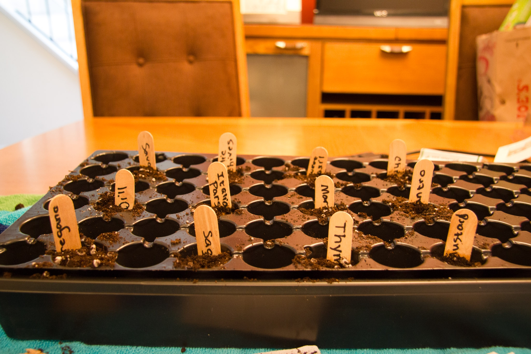 starting-an-herb-garden-supernovawife-2