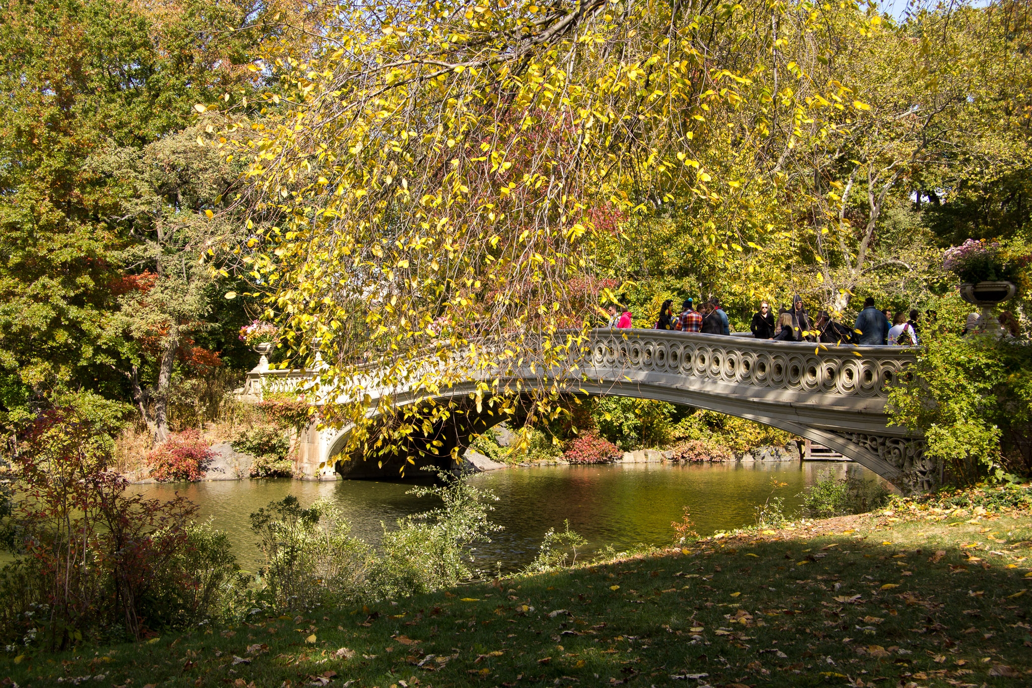 Bow-Bridge-Central-Park