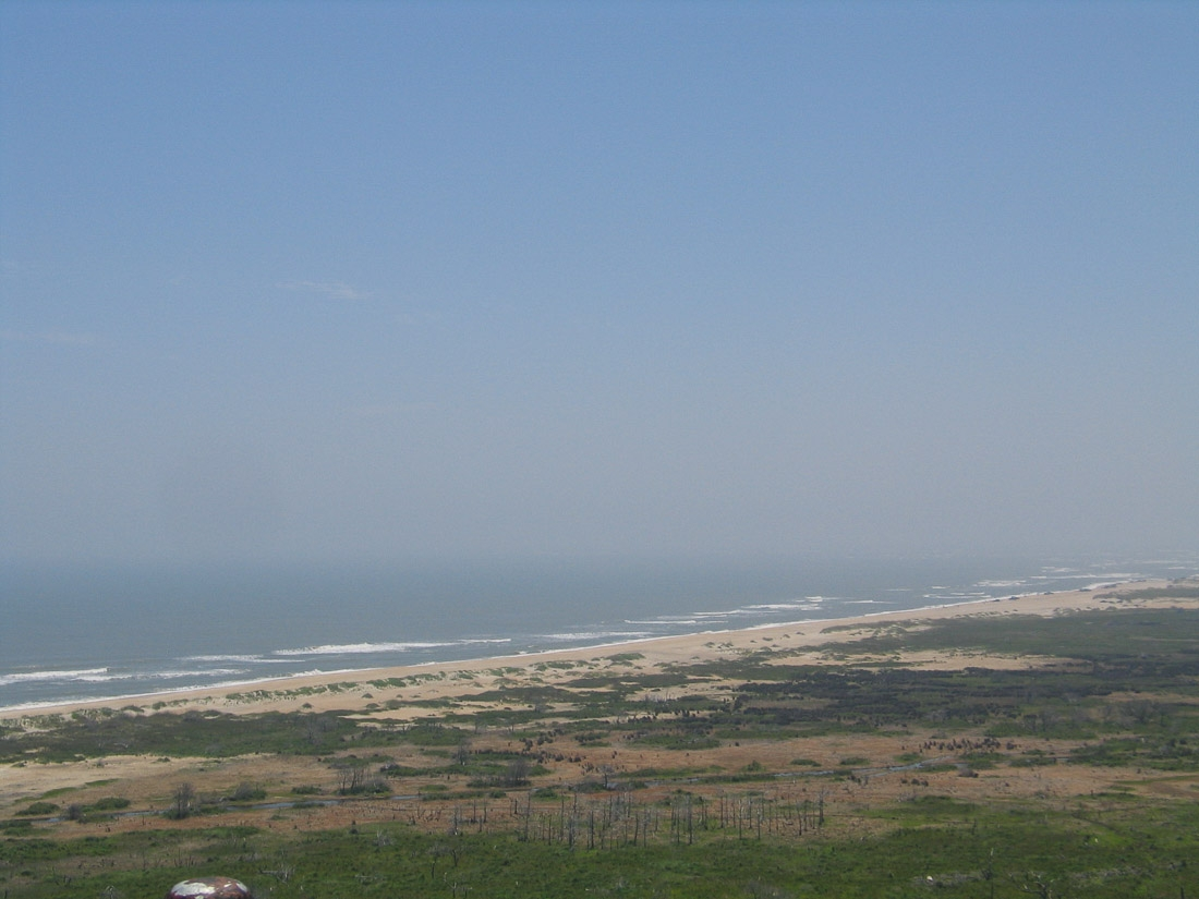 View from Cape Hatteras Lighthouse