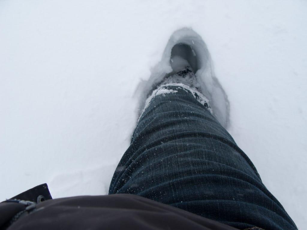 2010_02_06 14_36_54 Snowmageddon 2010