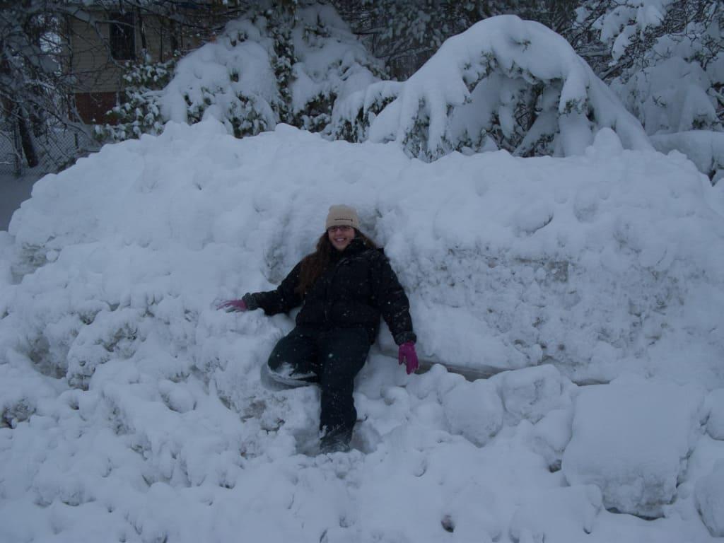 2010_02_06 14_50_27 Snowmageddon 2010