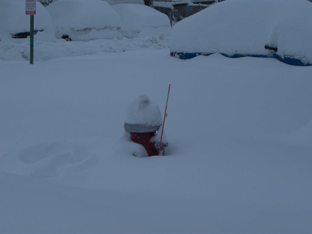 2010_02_06 14_59_11 Snowmageddon 2010