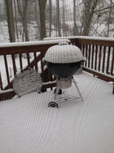 Grilling in the Snow?