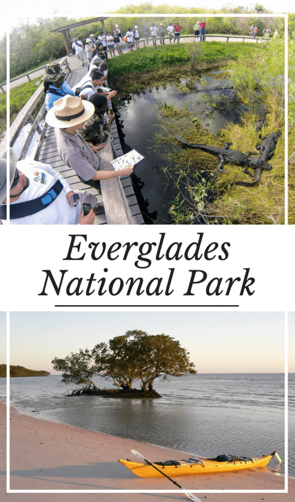 Everglades National Park as Part of Florida Keys Road Trip