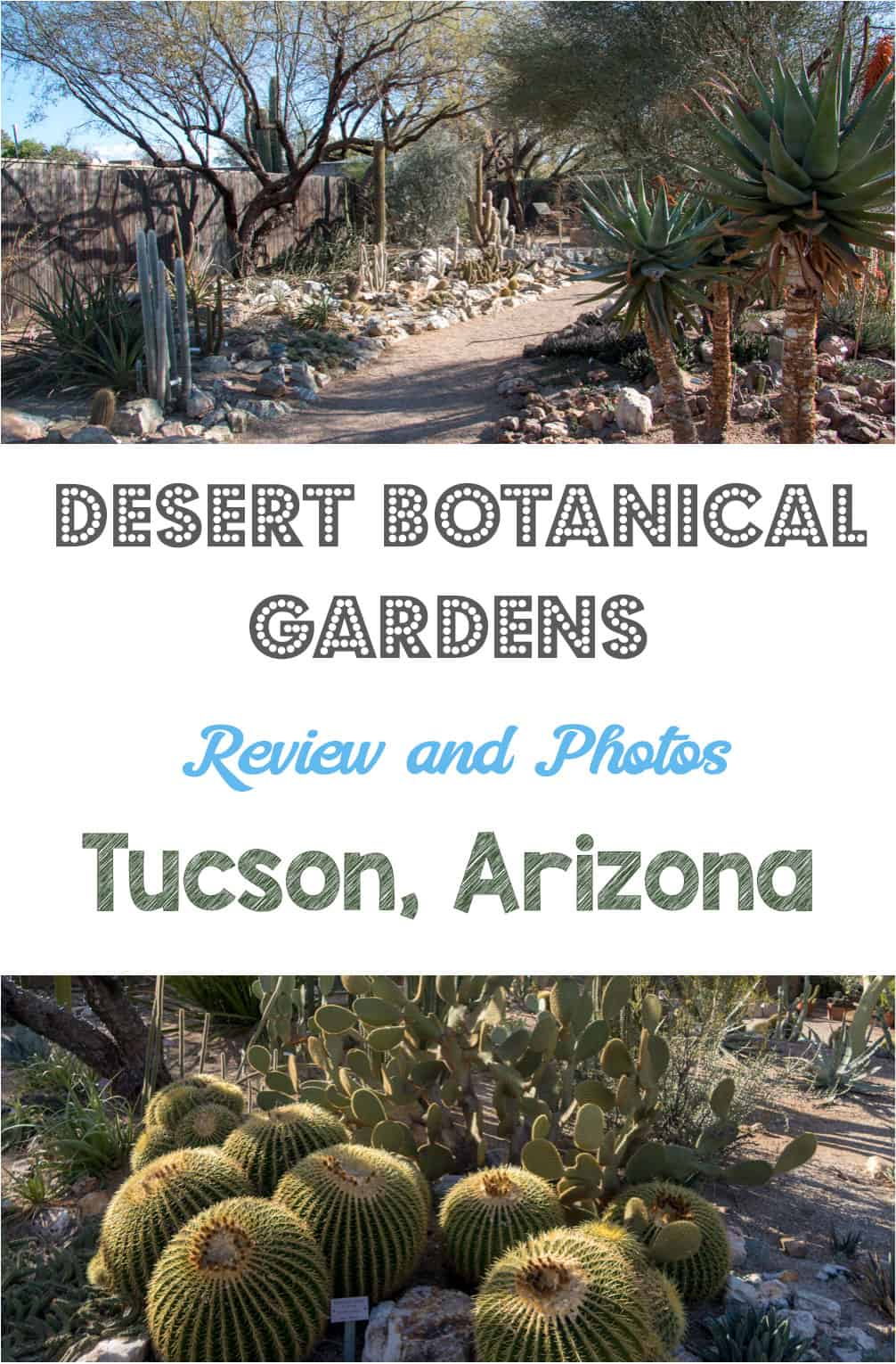 Botanical gardens with cactus in the desert? Indeed. If you're traveling to Tucson, Arizona, check out the Tucson Botanical Gardens
