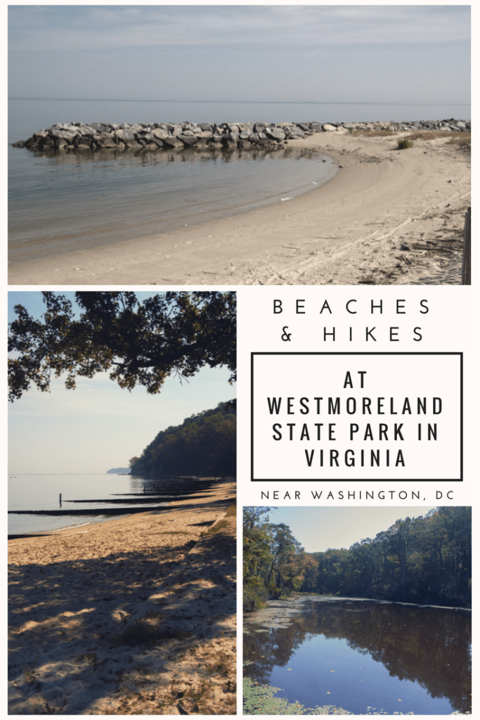 beaches and hikes at westmoreland state park in virginia | camping near DC